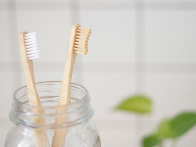 Two clean toothbrushes on a jar - Rotary Way, CA